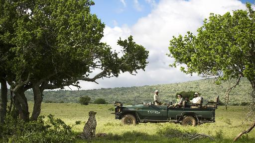 Kwandwe - privates Wildreservat | Abendsonne Afrika