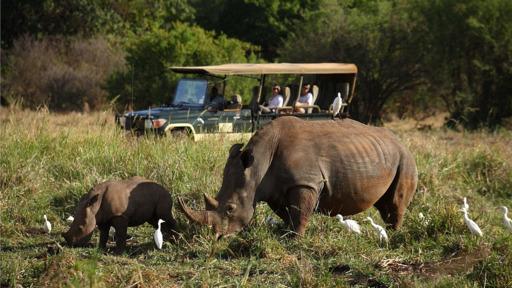 Deluxe Flugsafari Kenia - Out of Africa | Abendsonne Afrika