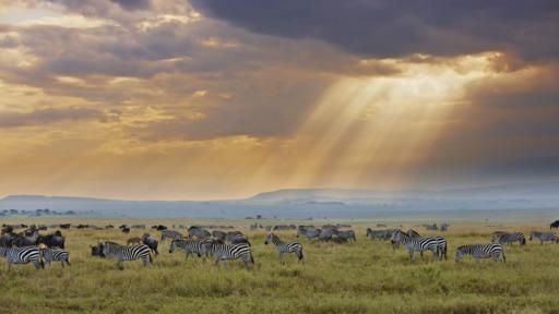 Die Höhepunkte Tansanias | Abendsonne Afrika