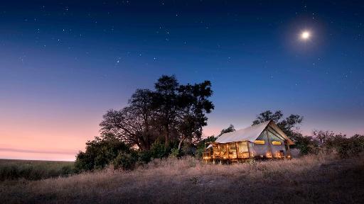 Linyanti Ebony Camp | Abendsonne Afrika