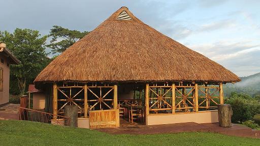 Chimpanzee Forest Guesthouse | Abendsonne Afrika