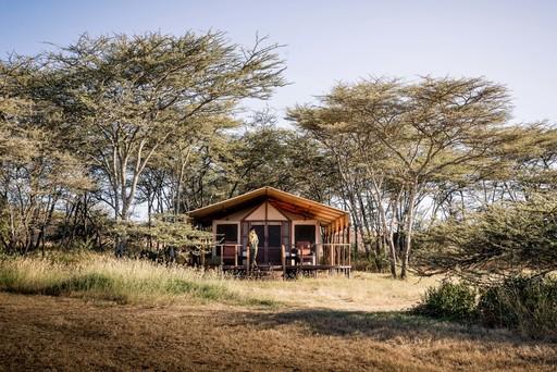 Sanctuary Kusini Camp | Abendsonne Afrika