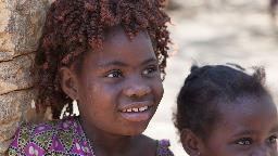 Header Sambias Vielfalt | Abendsonne Afrika