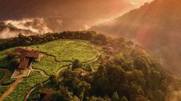 Blick auf das One & Only Nyungwe House in Ruanda | Abendsonne Afrika