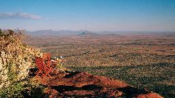 Blick über das Samara Private Game Reserve in Südafrika | Abendsonne Afrika