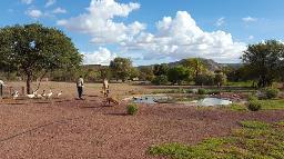 Farmleben auf der Zaris Ranch & Restcamp in Namibia | Abendsonne Afrika