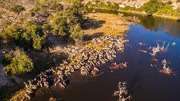 Header Botswana Intensiv | Abendsonne Afrika