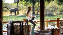 Elefant im Sanctuary Chiefs Camp in Botswana   Abendsonne Afrika