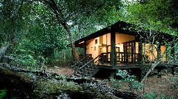 Chalet in der Phinda Forest Lodge in Südafrika | Abendsonne Afrika
