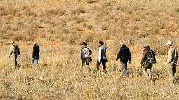 Header Kgalagadi Transfrontier Park