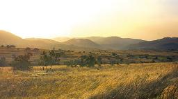 Landschaft in Eswatini (ehemals Swaziland) | Abendsonne Afrika