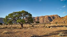 Lanschaft im NamibRand Nature Reserve in Namibia | Abendsonne Afrika