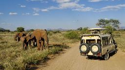 Header Höhepunkte Kenias