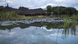 Blick auf das Okonjima Luxury Bush Camp inNamibia | Abendsonne Afrika