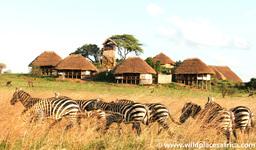 Übersicht der Apoka Safari Lodge in Uganda | Abendsonne Afrika