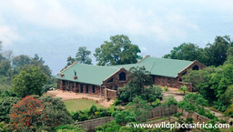 Anlage der Clouds Mountain Gorilla Lodge in Uganda | Abendsonne Afrika