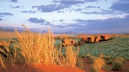 Lage der Wolwedans Dune Lodge in Namibia | Abendsonne Afrika