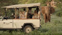 Safari im Saruni Rhino Camp | Abendsonne Afrika