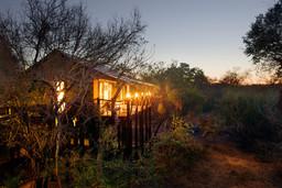 Landschaft um das Kapama Buffalo Camp in Südafrika | Abendsonne Afrika