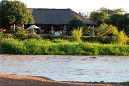 Hippos am Karen Blixen Camp in Kenia | Abendsonne Afrika