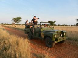 Safari Fahrzeug des Kuzikus Camps in der Kalahari in Namibia | Abendsonne Afrika