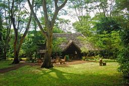 Hauptgebäude des Migunga Tented Camps in Tansania | Abendsonne Afrika