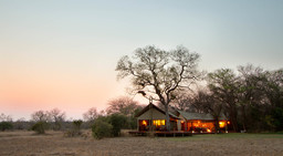 Zelte des Rhin Walking Safaris Plains Camp in Südafrika   Abendsonne Afrika