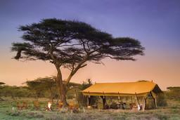 Lagerfeuer und Essbereich des Serengeti Under Canvas in Tansania | Abendsonne Afrika