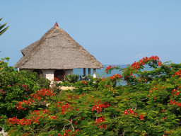 Garten der Tijara Beach Lodge in Kenia | Abendsonne Afrika